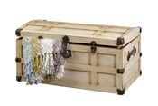 Steamer-Trunk-in-Painted-Maple